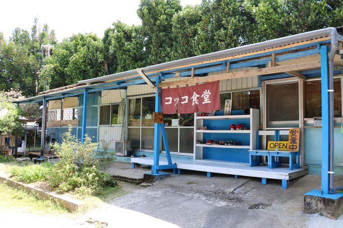 「コッコ食堂」は備瀬のフクギ並木の中にあります