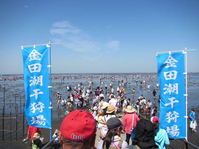 5.金田海岸