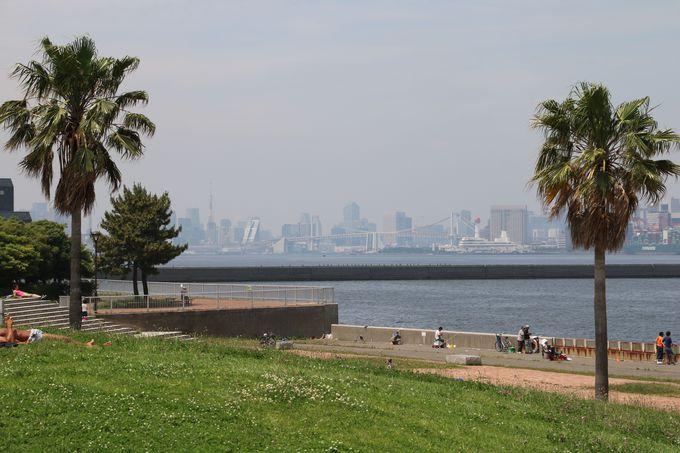 みなと広場から見る景色は、ここが東京であることを実感!
