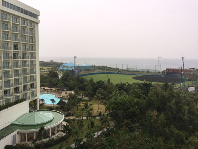 会議やイベント参加、野球キャンプ目的と幅広くの方々にも便利なホテル!