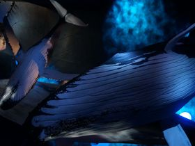 寝転んで良し食べて良し!ドイツ最大級の水族館「オツェアノイム」