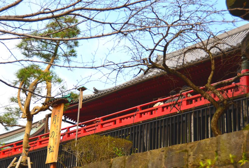 朱色彩かな「舞台造り」の御堂 東京上野の人気スポット「清水観音堂」