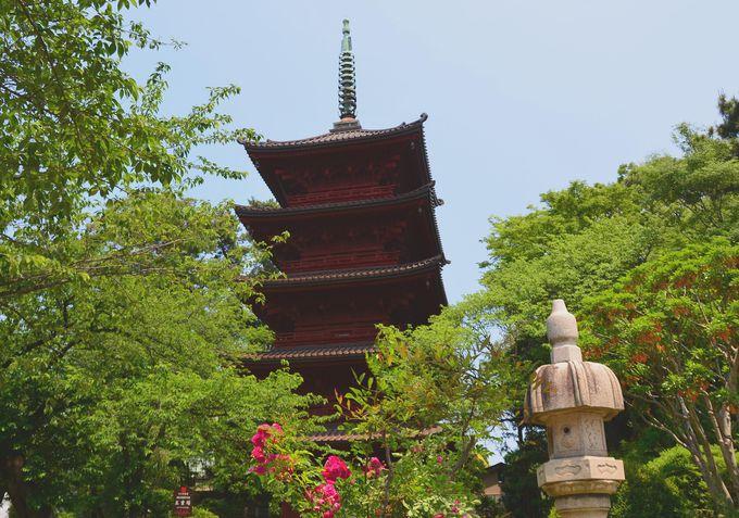 数々の重要文化財の伽藍が残る名刹 千葉・下総中山鬼子母神「法華経寺」