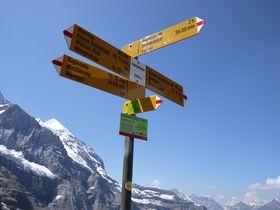 大迫力のアイガー北壁直下!スイス・グリンデルワルトで「アイガートレイル」ハイキング