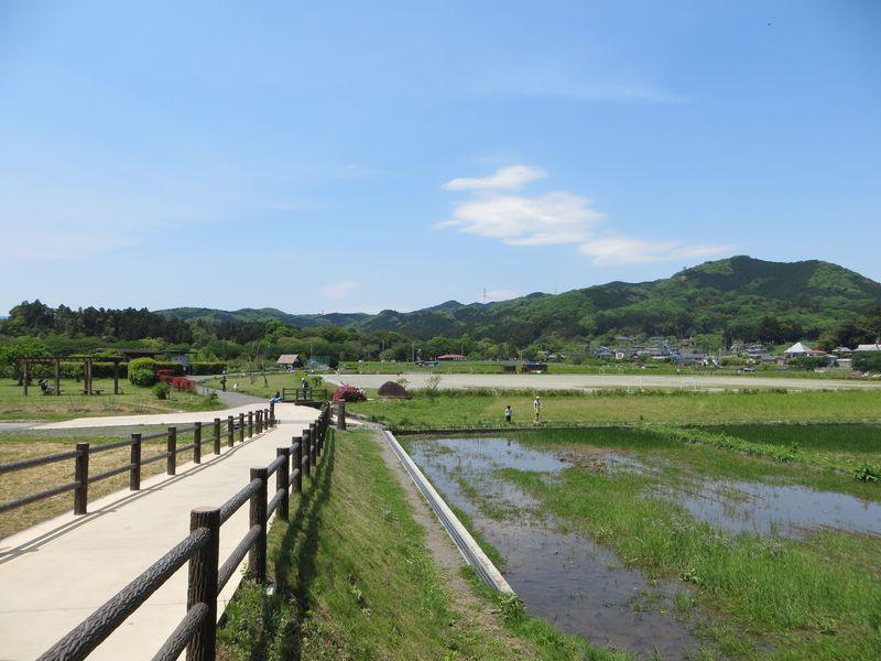 都心から僅か1時間!埼玉・高麗駅から新緑の田園風景をぶらり散歩