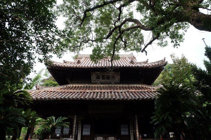 坂本龍馬が福を授かった聖福寺は、映画「解夏」の舞台としても有名!