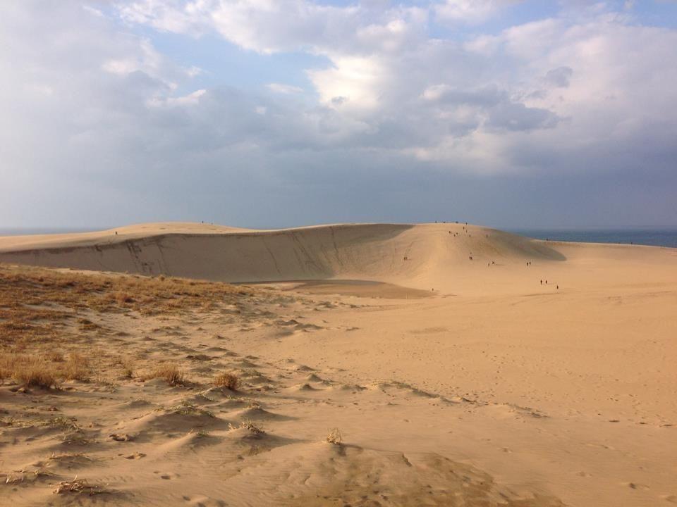昼の砂丘と夜の砂丘を両方満喫できるのは今だけ!