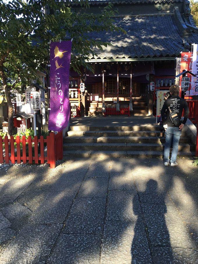 鴻神社がおすすめなわけとは!