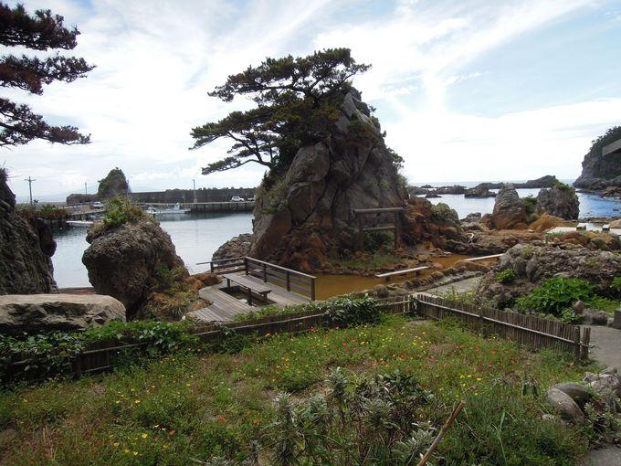 4.式根島