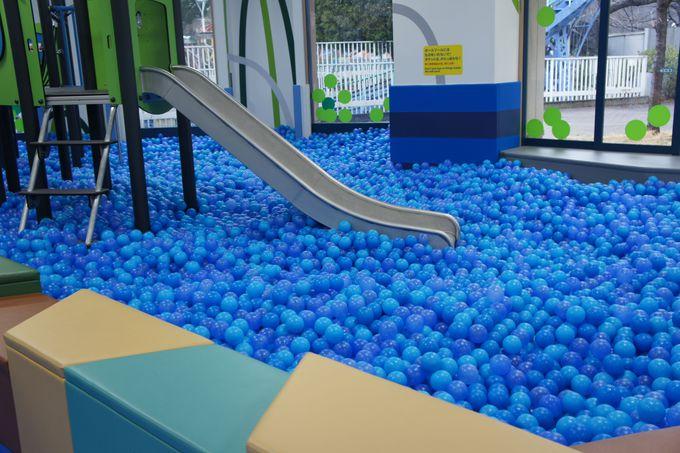 ボールプールゾーンと大型遊具ゾーンで大はしゃぎ!