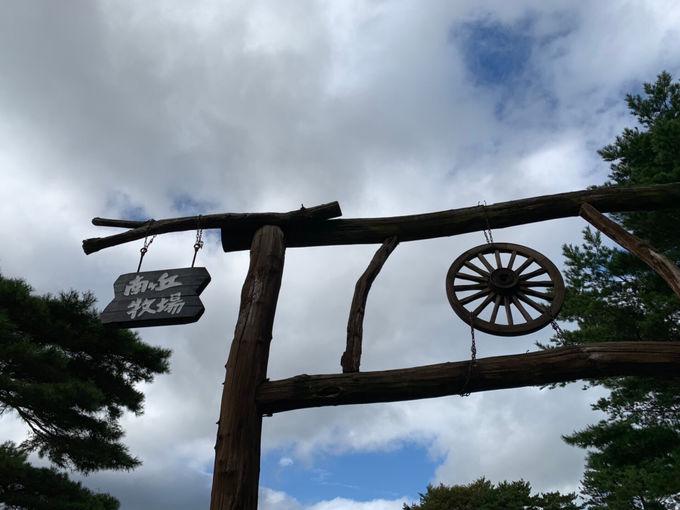 入場無料が嬉しい南ヶ丘牧場