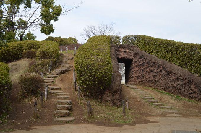 縄文の歴史と文化の交流地・東京「大森貝塚遺跡庭園」を歩く!