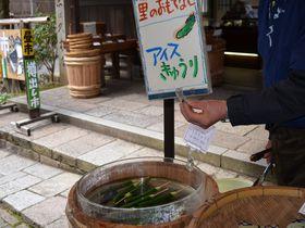 どこか懐かしい日本の里山 京都・大原「音無の滝」で心身ともに癒される!