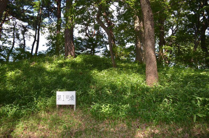 緑地に馴染むように並ぶ8基の「古墳群」