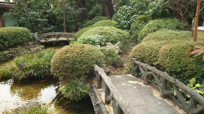 ほっとくつろげる緑の空間、伊勢丹「アイ・ガーデン」