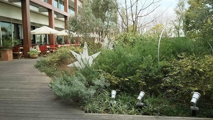 眺めも最高!大人の屋上庭園、高島屋「ホワイトガーデン」