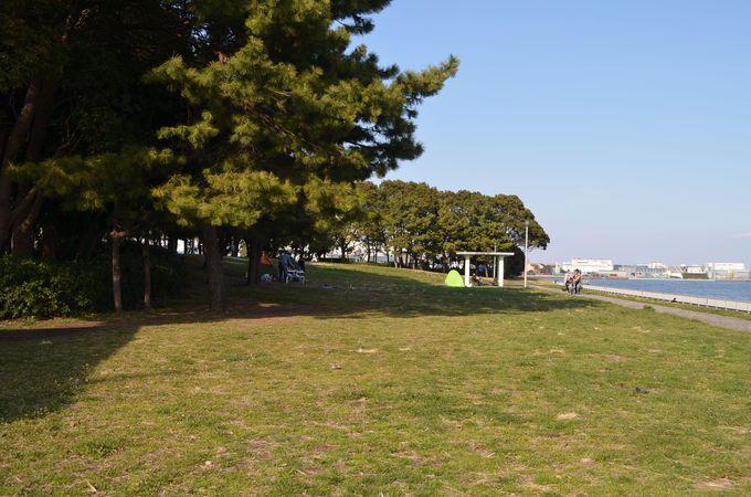 「京浜島つばさ公園」でのんびりした時間を満喫