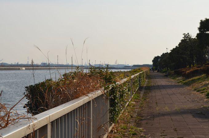 「京浜島緑道公園」から空港を眺める