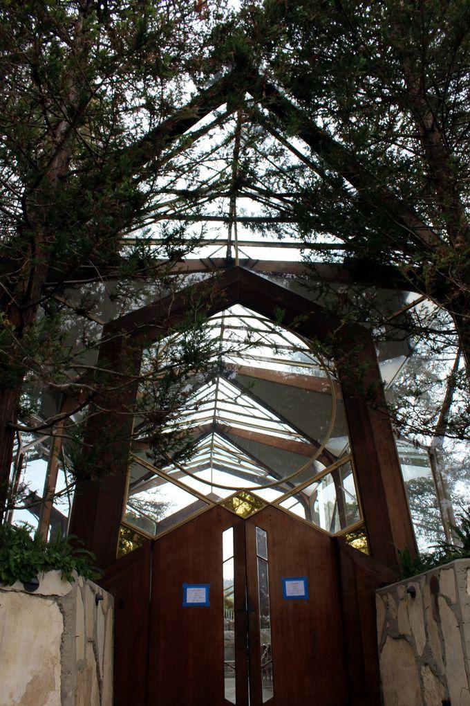 緑に囲まれた美しいガラスの教会