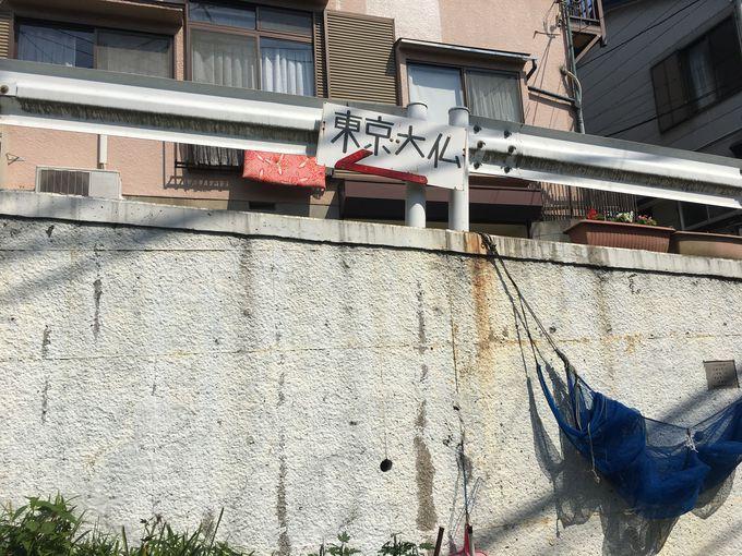 都心から離れた閑静な住宅街に現れる「東京大仏」
