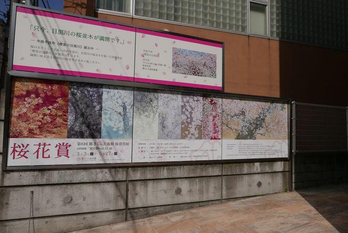 日本画好き&桜好きにはたまらない!現代日本画の専門美術館、郷さくら美術館