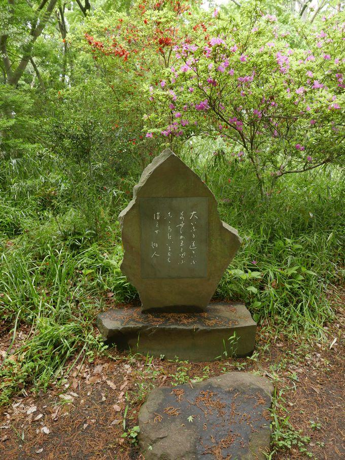 ありし日の史跡に思いを馳せる…「次郎物語」空林庵のモデル、空林荘跡
