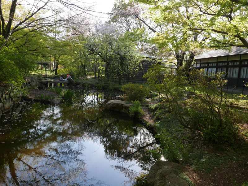 名作『次郎物語』はここで生まれた!東京・小金井の浴恩館公園を歩く