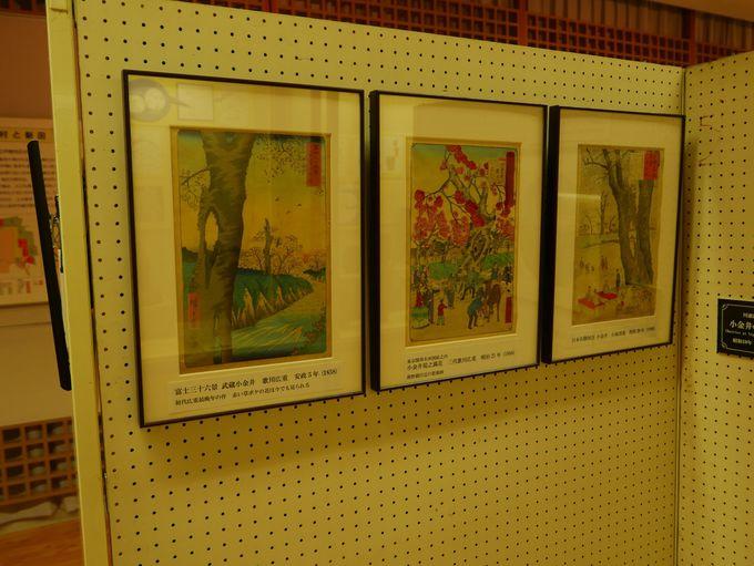 珍しい民具にあの名画家の作品も!文化財センター