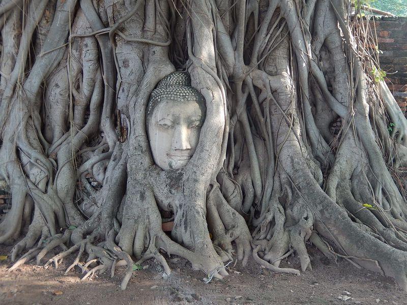 お寺見学だけじゃない!世界遺産「アユタヤ」おすすめの観光ルート