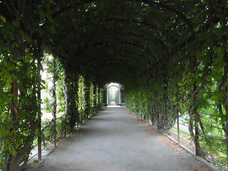 本当は秘密にしたい!ウィーン・シェーンブルン宮殿を独り占めできる裏技