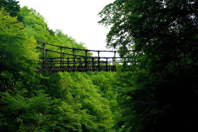二重の橋から眺める自然との驚異の融合