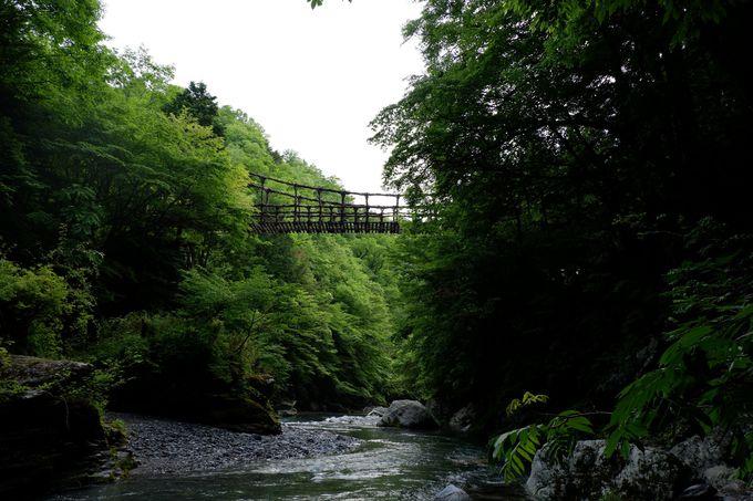 5. かずら橋