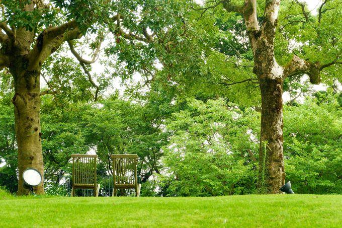 四季折々魅力溢れる庭園