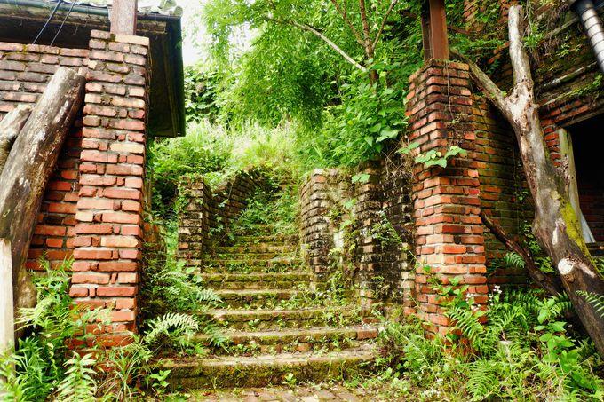 朽ちた煉瓦に草木が茂る「天空の城ラピュタ」の世界