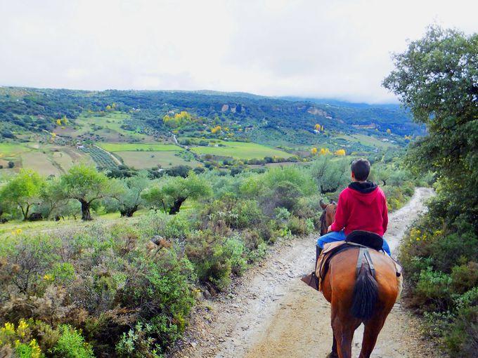 馬にのるのもひとつの手