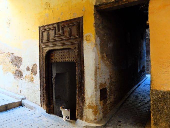 2日目:モロッコの神髄!1000年の歴史を誇る迷宮都市フェズへ