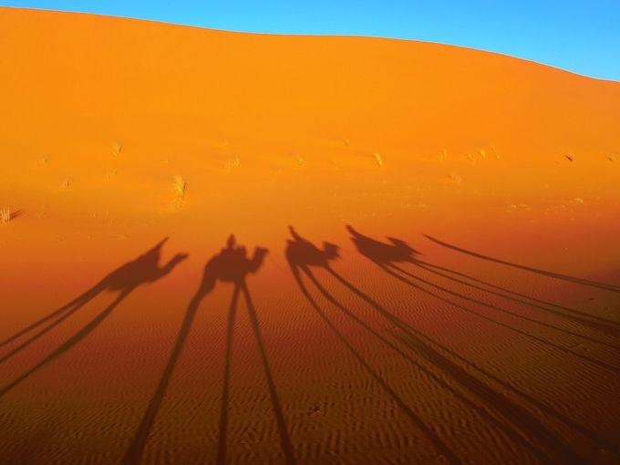 プラス2泊3日出来るなら…アラビアンナイトの世界!サハラ砂漠を満喫
