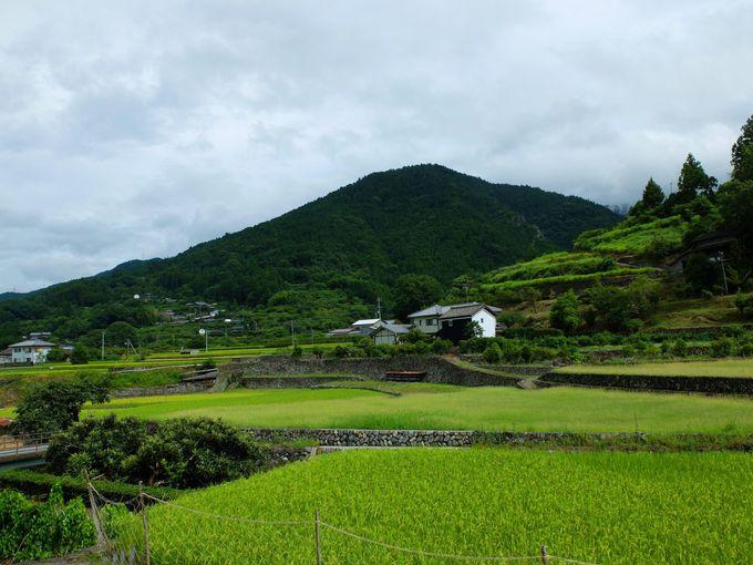 徳島県神山町とは