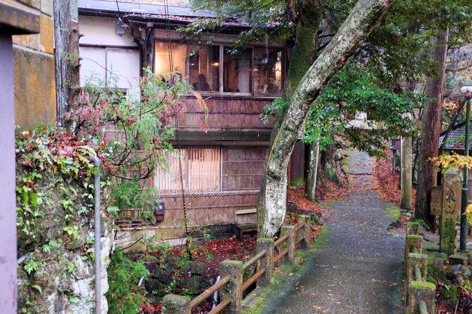 密かな別荘へ訪れた気分に