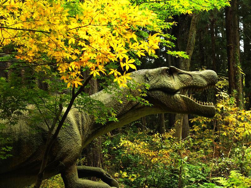 森に実物大の恐竜が出没!?恐竜の聖地 福井「かつやま恐竜の森」