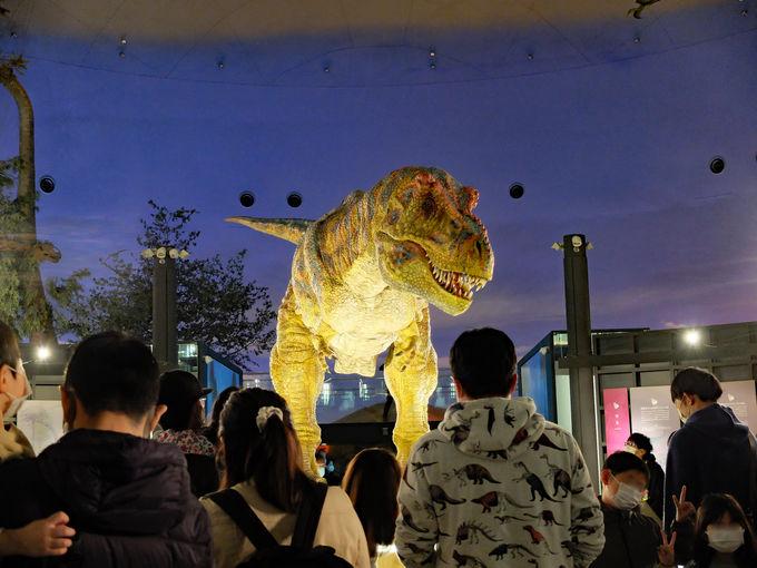 恐竜ロボットも!?魅力は展示法にアリ