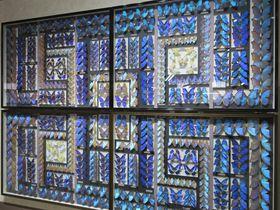 壁一面の美チョウも!岐阜「名和昆虫博物館」で世界のカブトとクワガタに出会う