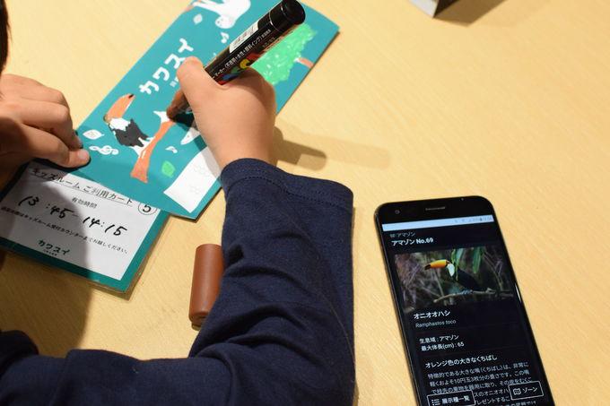 「カワスイ 川崎水族館」は親子に嬉しいポイントがいっぱい!