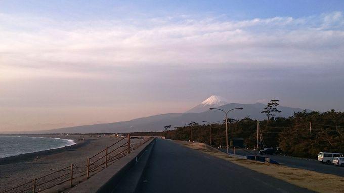 富士山を眺めて海辺のサイクリング