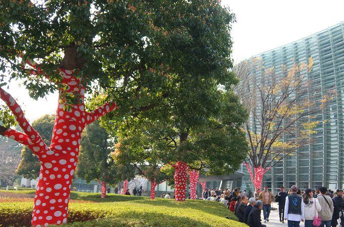 日本を代表する現代アーティスト草間彌生の過去最大規模の大回顧展!
