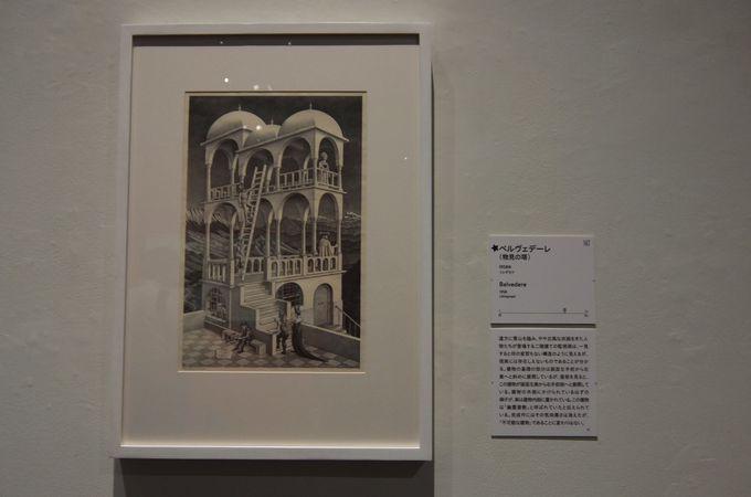 代表的な「だまし絵」の作品も多数展示!