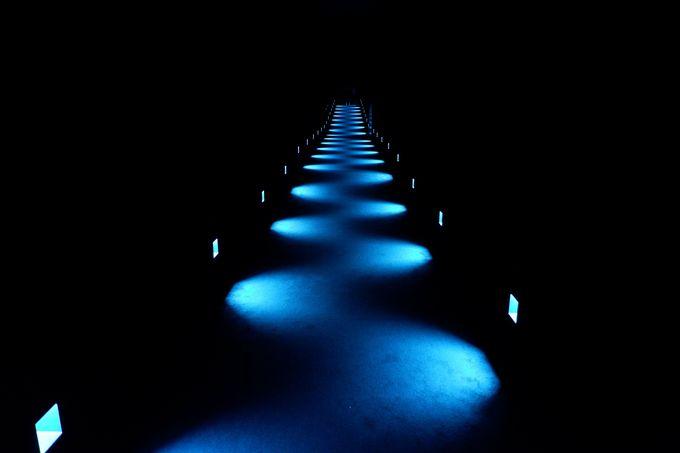 「チームラボ プラネッツ」の暗い廊下では、感覚を研ぎ澄ませよう