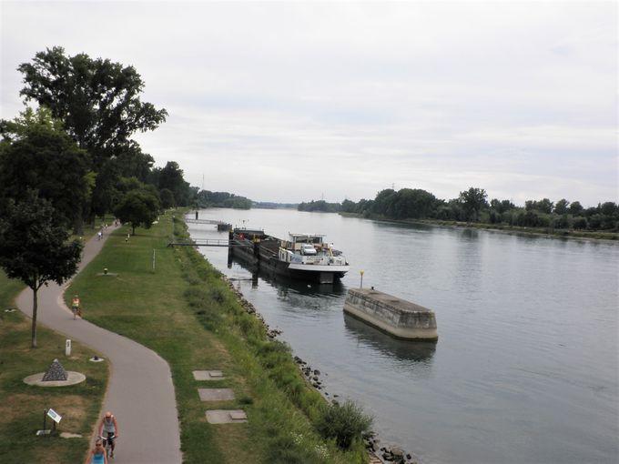 ライン川の上を歩こう!
