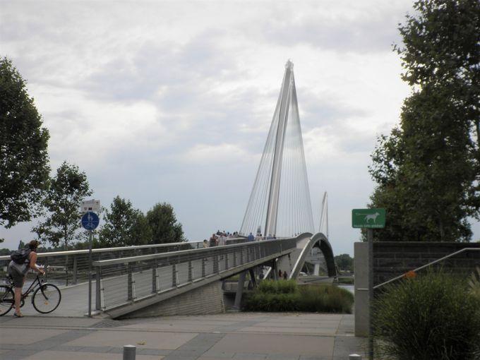 """「ミムラムの歩道橋」は""""二つの岸を繋ぐ橋"""""""