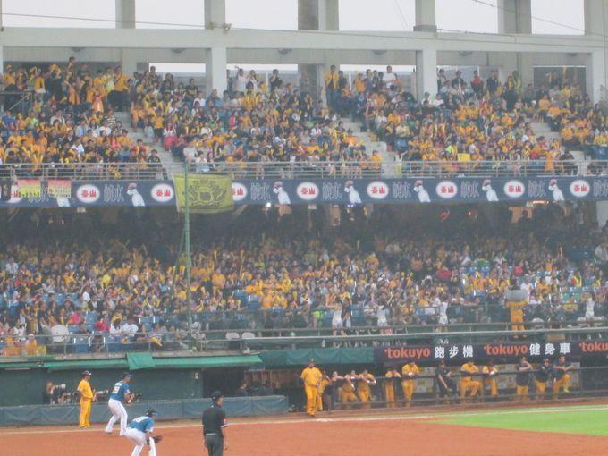 台湾野球の醍醐味!ノスタルジックかつダイナミックな応援スタイル!